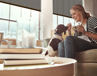 Person sitting on a sofa playing with a dog, roller shades cover the windows